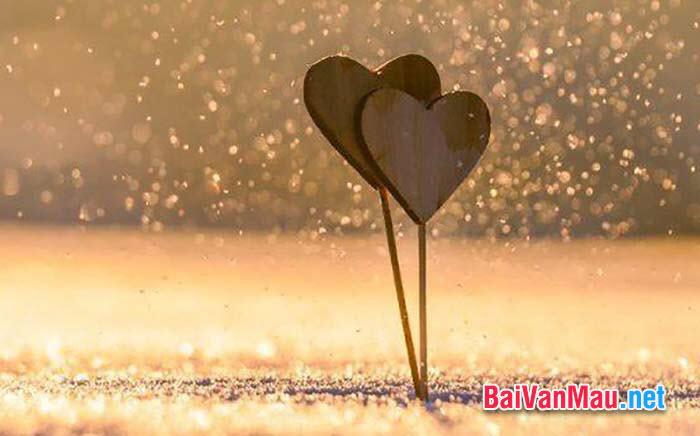 """Nhà văn Đức F. Sile có nói: """"Tình yêu là niềm say mê đem lại hạnh phúc cho người khác"""". Suy nghĩ của anh (chị) về ý kiến trên"""