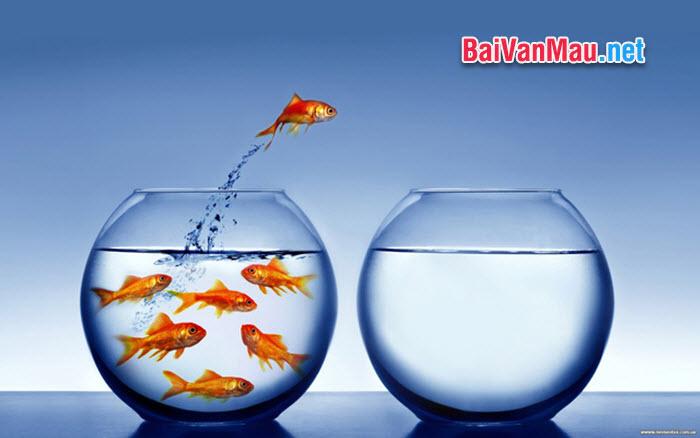 Không nỗ lực khẳng định mình thì khó thành công, nhưng không tỉnh táo chế ngự mình thì dễ vấp ngã. Suy nghĩ của anh / chị về ý kiến trên. (Trích đề thi học sinh giỏi Quốc gia năm 2011)