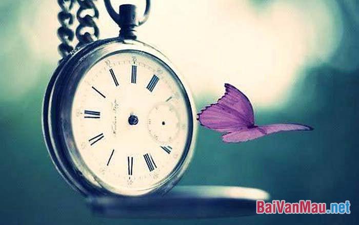 Văn nghị luận - Thời gian là vốn quý và hạnh phúc là có thật