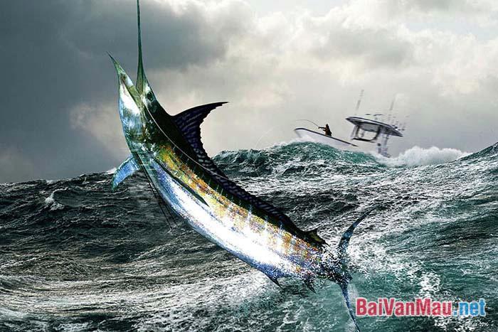 Hình ảnh ông lão và con cá kiếm trong đoạn Ông già và biển cả của Hê-ming-uê