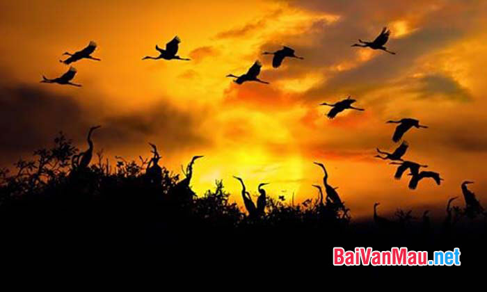 Chép lại bài Mộ (Chiều tối) trong Ngục trung nhật kí (Nhật kí trong tù) của Hồ Chí Minh. Bình giảng hai câu cuối bài thơ để làm rõ cái hay của hình ảnh sơn thôn thiếu nữ (cô em xóm núi) và hình ảnh lô đĩ hồng (lò than rực hồng) trong bài thơ