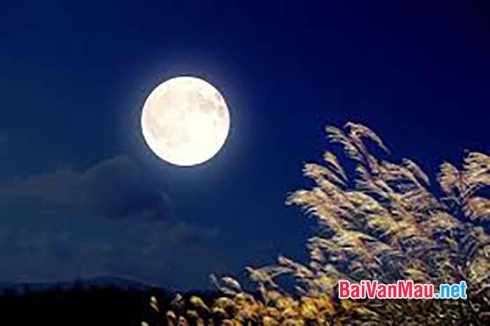 Người ngắm trăng soi ngoài cửa sổ