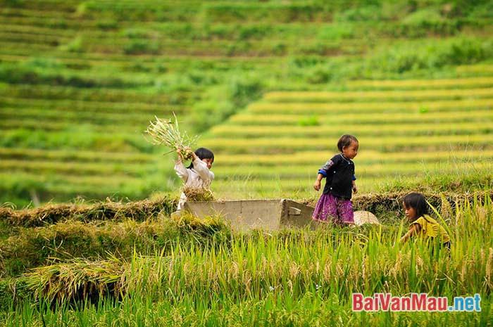 """Phân tích đoạn thơ sau đây trong bài """"Việt Bắc"""" của Tố Hữu: """"Ta về, mình có nhớ ta... Nhớ ai tiếng hát ân tình thủy chung"""""""