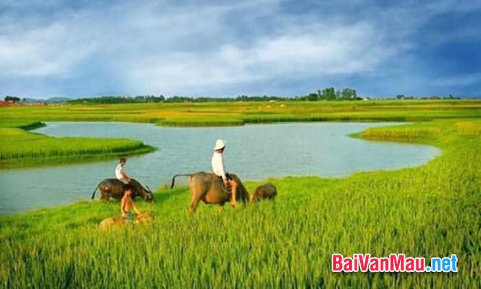 Tình yêu quê hương của người dân lao động Việt Nam qua ca dao - dân ca