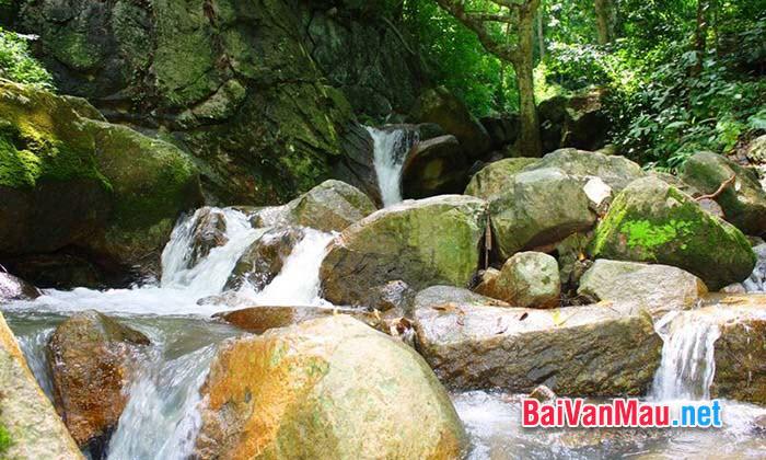Tình yêu thiên nhiên trong thơ Nguyễn Trãi qua các bài mà em yêu thích
