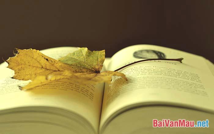 """Trong một bức thư bàn về văn chương, Nguyễn Văn Siêu có viết: """"Văn chương có loại đáng thờ... Có loại không đáng thờ..."""". Hãy phát biểu ý kiến về quan niệm trên. (Yêu cầu viết bài văn)"""