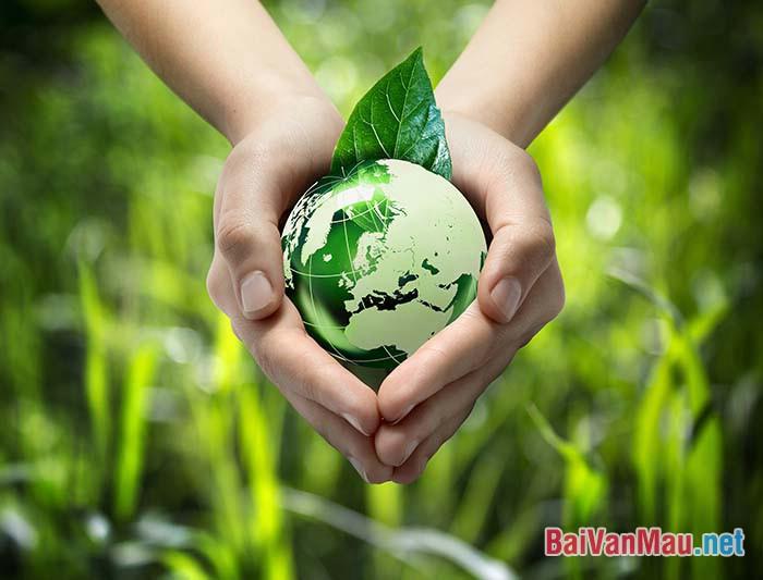 Chứng minh rằng bảo vệ môi trường thiên nhiên là bảo vệ cuộc sống con người