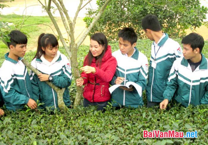 Trong bài bàn luận về phép học, Nguyễn Thiếp đã khẳng định quan điểm và phương pháp đúng đắn trong học tập là gì