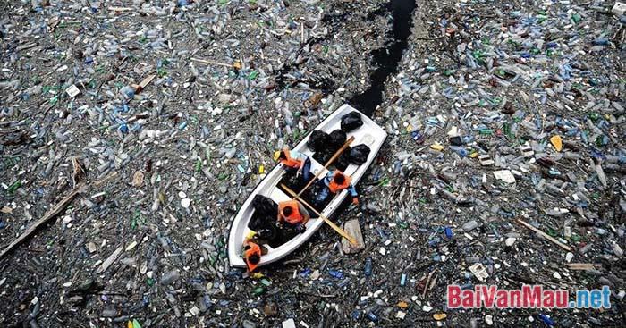 Hãy chứng minh rằng môi trường của chúng ta đang bị tàn phá nặng nề