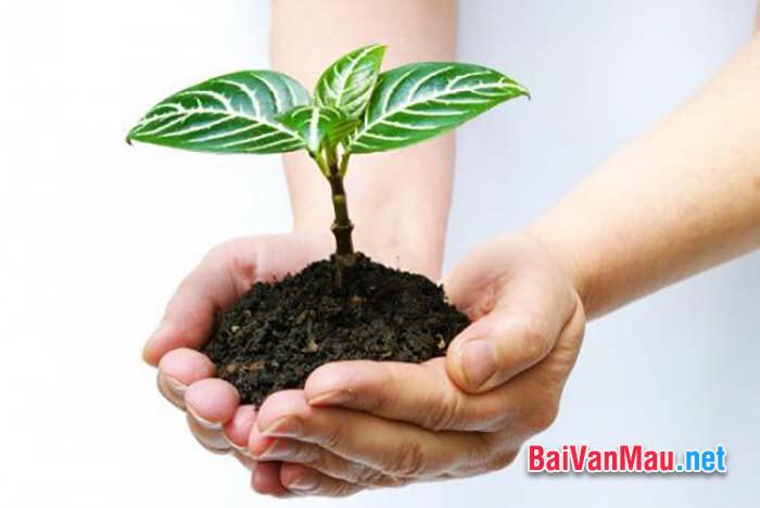 Bạn hãy giải thích: Ăn quả nhớ kẻ trồng cây
