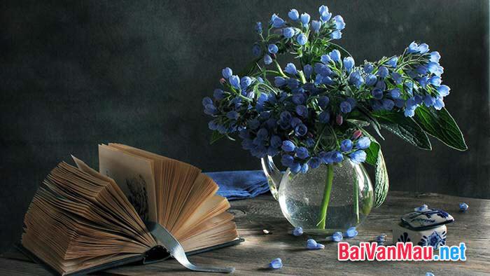 Một nhà văn có nói: Sách là ngọn đèn sáng bất diệt của trí tuệ con người. Em hãy giải thích nội dung câu nói đó