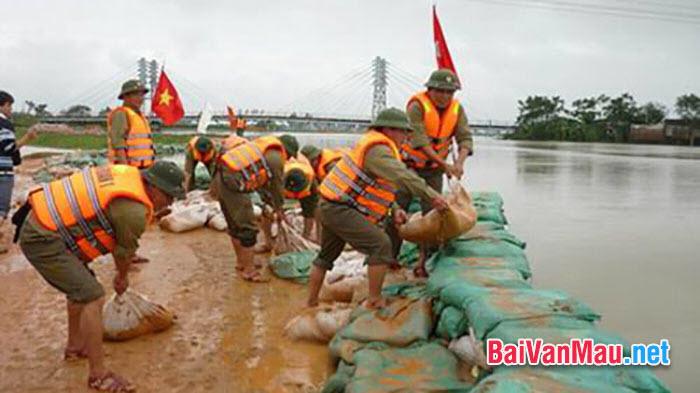 Viết đoạn văn bàn về phòng chống lũ lụt