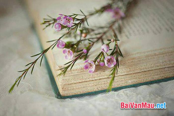 Hãy viết bài văn chứng minh: Sách là người bạn lớn của con người