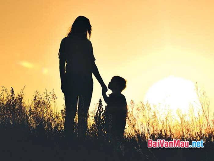 Viết đoạn văn cảm nhận về người mẹ trong văn bản Mẹ tôi