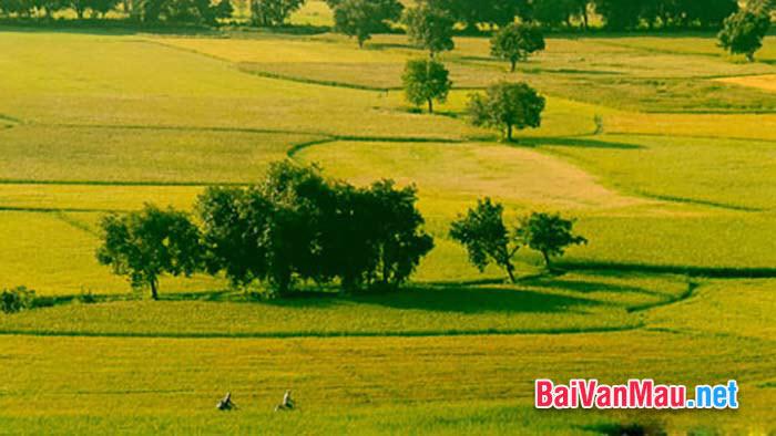 Quê em là một vùng nông thôn yên bình có nhiều cảnh đẹp